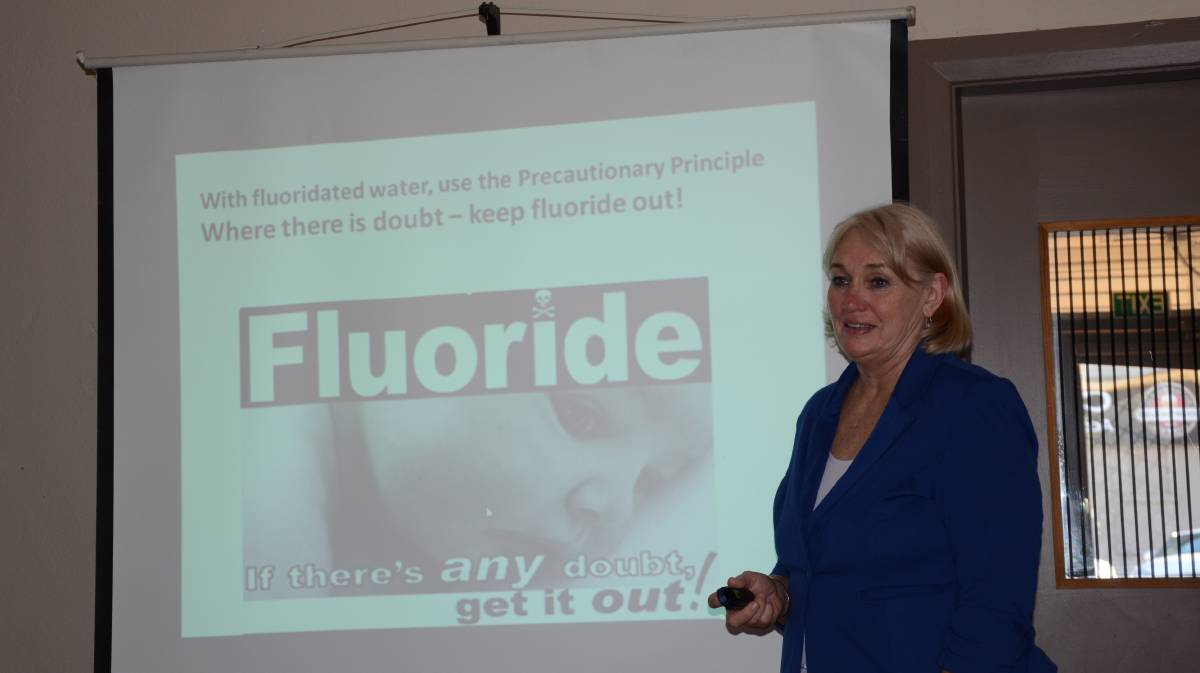 OPPONENTS: Fluoride Action Network's Merilyn Haines gives a public workshop against fluoride. Photo: Billy Jupp